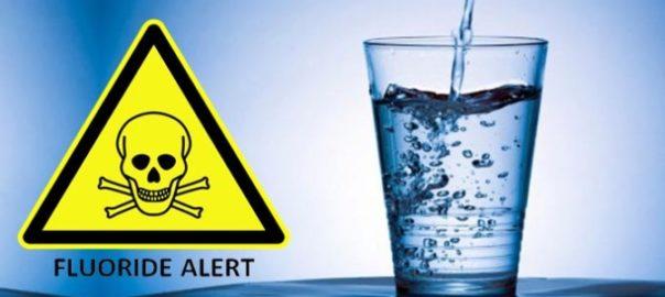 Fluoride – Nature's Cavity Fighter